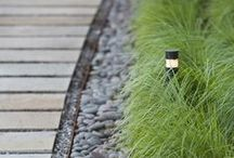 Gardening Ideas / Great gardening ideas that we discover on Pinterest and else ware.