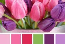Couleurs / Association de couleurs