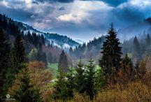 Paesaggi montani / Paesaggi montani del Veneto e Trentino alto Adige