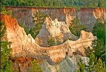 Attractions in and around Americus and Sumter County / There are lots of things to see and do in this area.