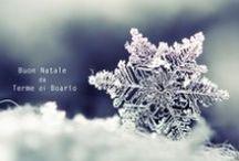 Buon Natale 2013 / Terme di Boario vi augura Buon Natale con tante immagini e promozioni dedicate al benessere! Scopri cosa ti aspetta per questo Natale sul nostro sito! http://bit.ly/Ionmem