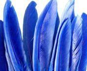 la mode en Bleu