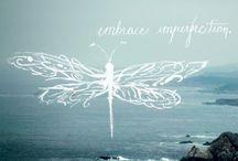 [Dragonflies]