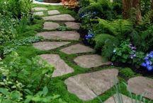 garden lay out