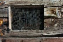 Ventanas / Las ventanas son lugares para salir o para asomarse, para mirar o para ser visto. Todas las ventanas son dobles.