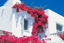 Greece / The sunny side of the planet...