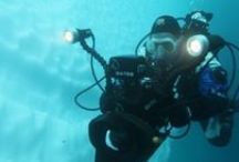 ★ Polar Diving ★