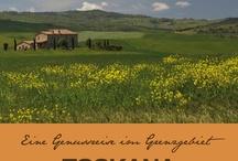 """Toskana und Umbrien / GenussTouren mit TourenGenuss, das ist das Motto der Reisen für Automobil-Enthusiasten, die mit mir durch die Toskana und Umbrien auf Strecken abseits der """"Touri-Pfade"""" unterwegs sind ... besondere Lokalitäten, traumhafte Domizile, """"posto segreto"""" ..."""