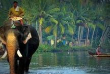 KERALA. God's Own. / Kerala, God's Own Country, India's most inspiring destination.   / by TK Harshan