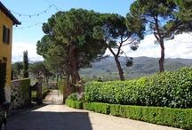 Toscana Genusstour April 2013 / GenussTour und TourenGenuss ist unser Motto. Diesmal Südtoscana und Chianti.