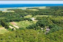 Cape Cod Homes for Sale / Homes for Sale