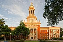 Baylor / by Abby Davies
