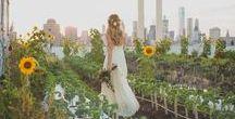 Sweet Summer Wedding / Alison and Kevin's Wedding - Brooklyn Grange - Brooklyn, NY - Purslane Catering - W Scott Chester Photography