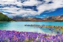 Beautiful Places & Spaces / Beautiful, fun, interesting....