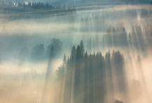 Landscape / by Lobelola