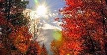 Breathe In The Autumn Air / The changing seasons are like the turning of a page to a new chapter. Take every opportunity to show your colors along your journey to addiction recovery.