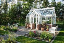 Greenhouse Växthuset