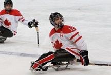 Sled or sledge hockey
