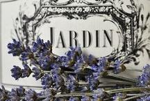 jardin / by Christiane Czr