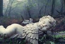 Beautiful Angels