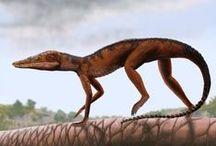 Paleozoology