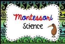 montessori science teaching