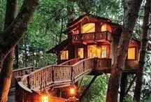 Domy,staré,moderní,přírodní   Houses,old,modern,natural
