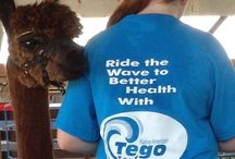 Tego Tea / Helps to reduce blood sugar naturally.