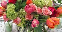 Flowers, plants