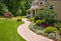 Garden & Landscape / Perk up your backyard with some of these gardening and landscape ideas!