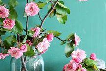 Fleurs & Bouquets // OR DU MONDE