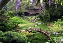 Gardens of Japan / Japanese  and Japanese-Style Gardens and Outdoor Spaces / by Hype Vamp Audrey