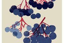 Food illustration / by Sara Infante