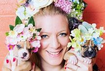 Pitbullflowerpower / 'Through my series Flower Power: Pit Bulls of the Revolution, I decided to photograph them with flower crowns, to infuse a softer energy into their imagery. I wish for this series to challenge the way we look at pit bulls, and ultimately the way we treat them.'  - Sophie Gamand