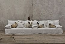 Creature Comforts / Making your house a home with your pets