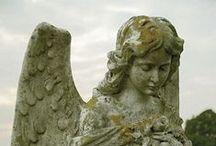 ༺ ♥ Angels ♥ ༻