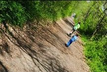 Down a Rabbit Trail: Interest-Led Learning with a Charlotte Mason Flair / Down a Rabbit Trail - personal blog