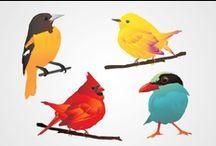 ➤ BIRDS