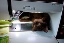 Real cats and quilts - the perfect combination / I love cats and I love quilts, no comments ;)