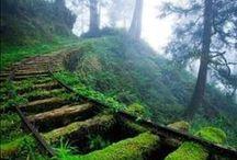 Aventuras / Paisajes, lugares, situaciones de viaje, aventura y naturaleza.