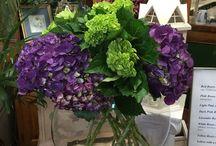 Pretty Flowers / Great fresh flowers that we love