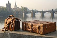 Globe Trotter / by Tracey N