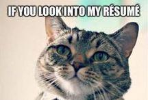 Job Funnies / by ECU Career Services