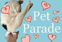 Pet Paraders