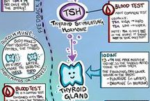 Hypothyroidism / Knowledge for Hypothyroidism sufferers.