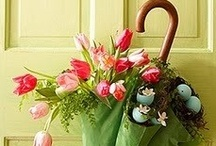 Decorations for spring