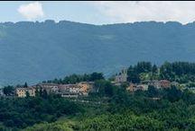 Montegallo / Montegallo è costituito da ventitré frazioni in gran parte disseminate nei crinali di un vasto sistema collinare; il territorio, dominato dall'imponente Monte Vettore, copre un'estensione di 4859 ettari e offre un'estrema varietà di situazioni ambientali e insediative.