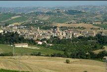 """Offida / Offida, situata a 293 metri s.l.m., è capoluogo della produzione del vino nelle Terre del Piceno con una DOCG """"Offida"""" caratterizzata da tre tipologie (Pecorino, Passerina ed Offida Rosso) e una DOC """"Terre di Offida"""" (nelle tipologie Passerina Passito, Vin Santo e spumante)."""