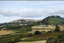 Acquaviva Picena / Acquaviva Picena, sorge su due colli adiacenti, il più alto supera i 360 m e il suo territorio è compreso in una fascia collinare che si estende tra i fiumi Tronto a sud e Tesino a nord, a poco più di 7 km dal mare e alle spalle di San Benedetto del Tronto.