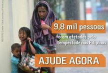 Tufão Haiyan